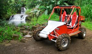 Kauai Waterfall Picnic Tour and Off-Road Adventure
