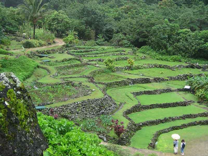 Limahuli-Gardens-3