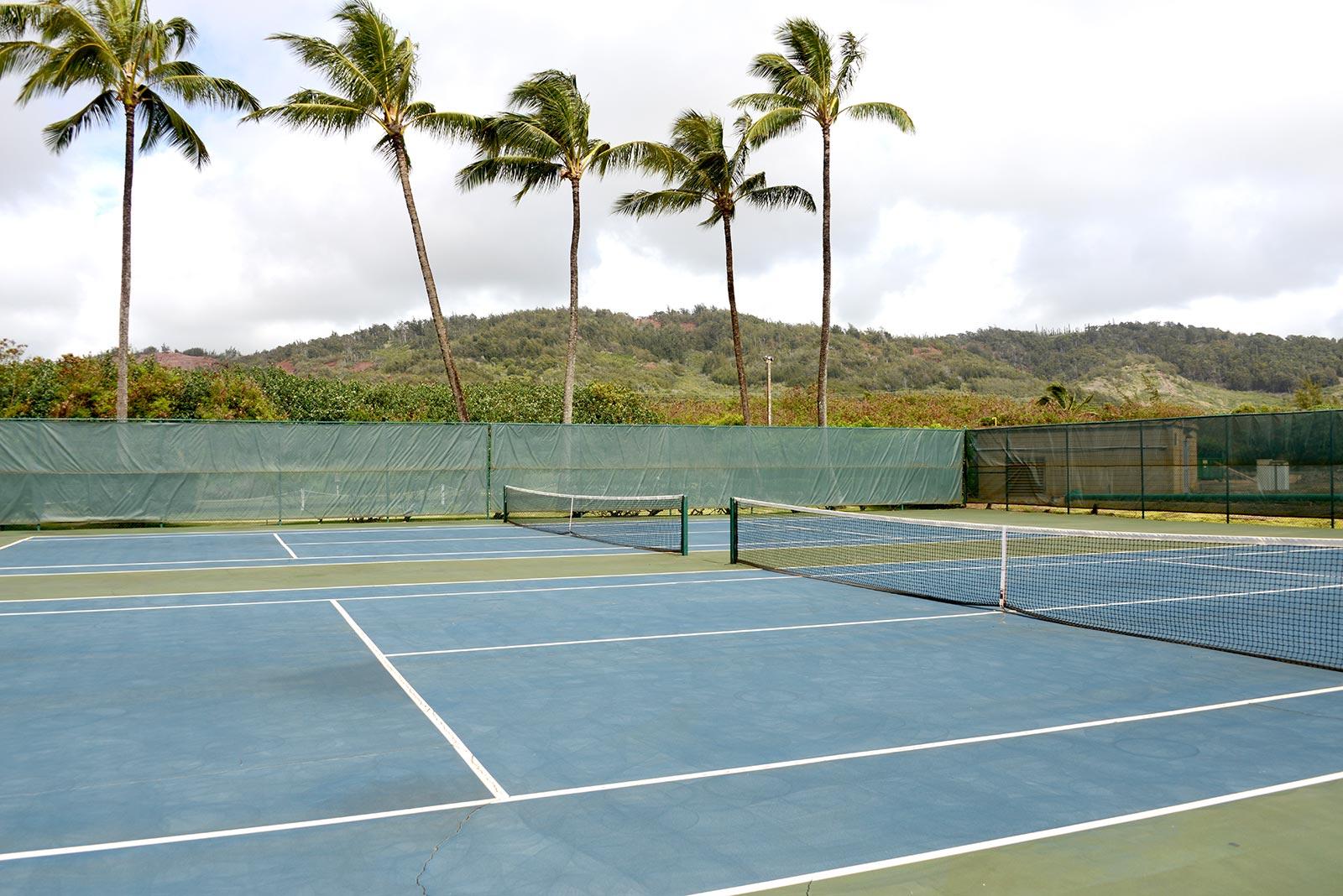 fd75a926b5905 Guber Kauai hometennis courtcredit  Papaa Bay Ranch LLC.